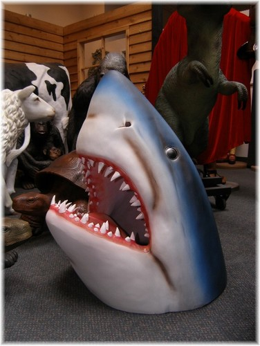 666photography 39 s blog of paper moons and cardboard seas for Requin decoration